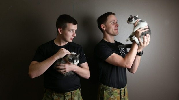 Pets as therapy for returned soldiers