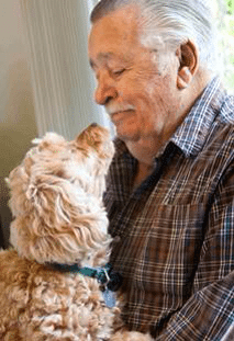 Pets In Aged Care Facilities